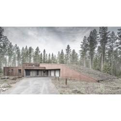 Финландската къща мечта