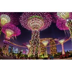 Най-впечатляващите градини в света са в Сингапур